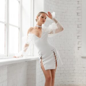 swan dress icon
